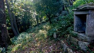 童子山に謎の道
