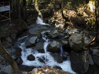 浄丸の滝を見るために対岸へぴょんぴょん