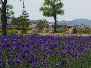 備中高松城跡公園2